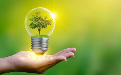 Your Guide to Understanding Energy Conservation