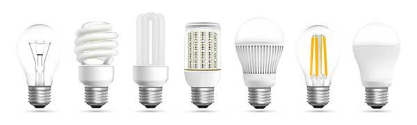 Light Bulbs | Variety of Bulbs Picture